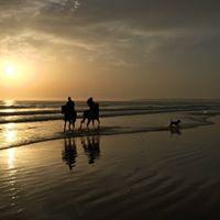 Rutas a caballo en Zahara