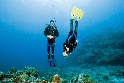 PADI Advance Open Water y PADI Adventure Diver, curso surf zahara delos atunes, buceo en Tarifa
