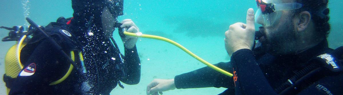 PADI Open Water Diver, hacer buceo en Tarifa, buceo barbate