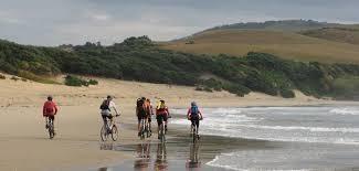 alquiler de bicicletas en zahara de los atunes, alquiler de bicicletas, alquiler de bicicletas en zahara