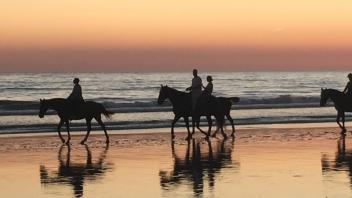 paseos a caballo en zahara de los atunes