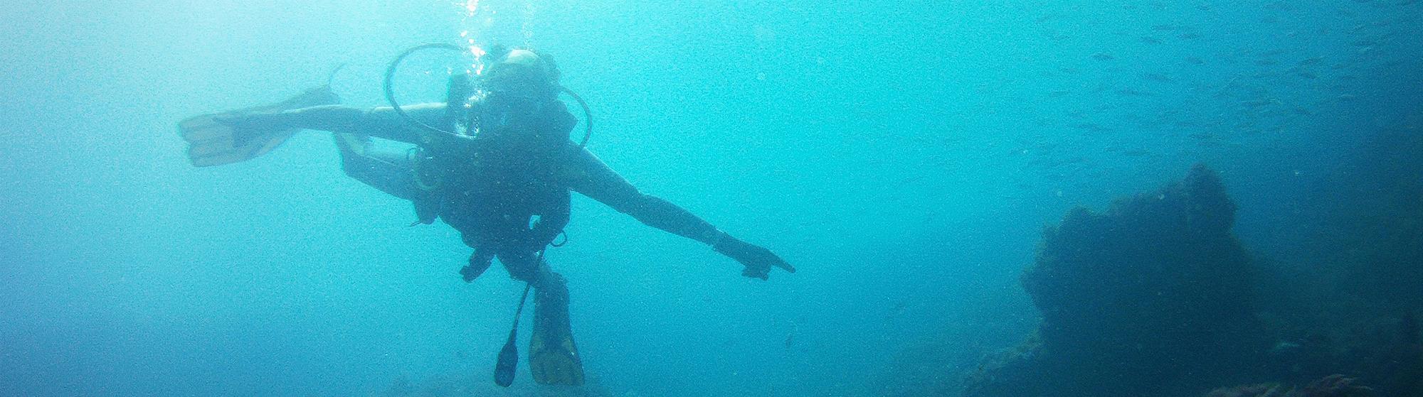 buceo en Zahara de los Atunes, discover scuba diving